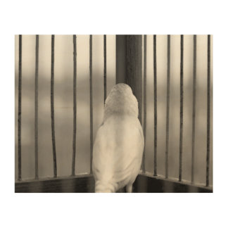 Impressão Em Madeira Pássaro na gaiola