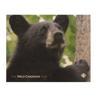 Impressão Em Madeira Primavera - urso preto