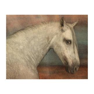 Impressão Em Madeira Retrato andaluz impressionante do cavalo
