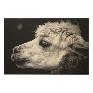 Impressão Em Madeira Retrato da lado-vista da alpaca