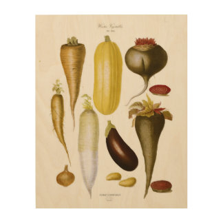Impressão Em Madeira Vegetais do inverno