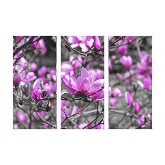 Impressão Em Tela A magnólia profuso floresce Triptych