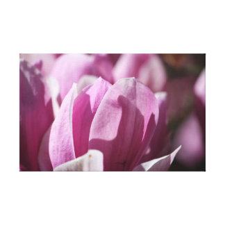 Impressão Em Tela A natureza da fotografia de Patterns4Nature