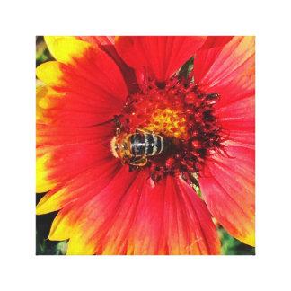 Impressão Em Tela Abelha na flor vermelha e amarela