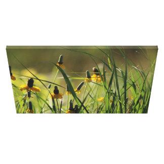 Impressão Em Tela Amarelos selvagens