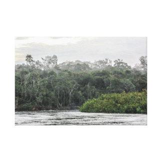 Impressão Em Tela Amazon Landscape