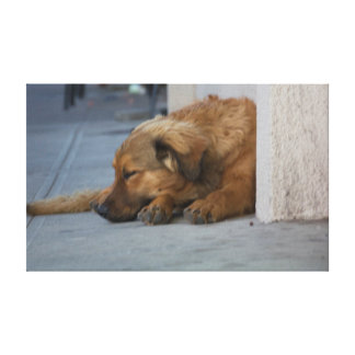 Impressão Em Tela Anos do cão
