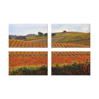 Impressão Em Tela Arte bonita de Tuscan do vinhedo do outono da