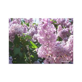 Impressão Em Tela Arte da parede da foto do Lilac