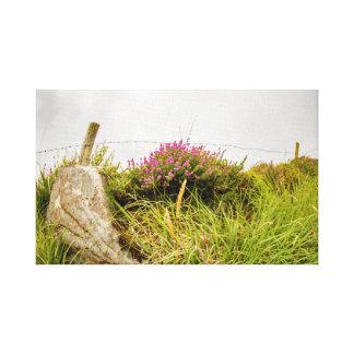 """Impressão Em Tela """"Arte da parede da urze irlandesa"""""""