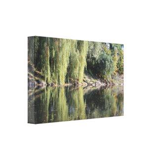 Impressão Em Tela Árvores de salgueiro refletidas no rio