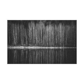 Impressão Em Tela Árvores de vidoeiro na costa do lago