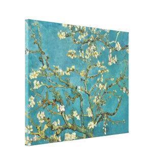 Impressão Em Tela Belas artes GalleryHD da flor da amêndoa de