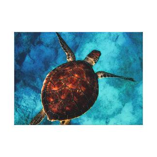 Impressão Em Tela Beleza da tartaruga de mar