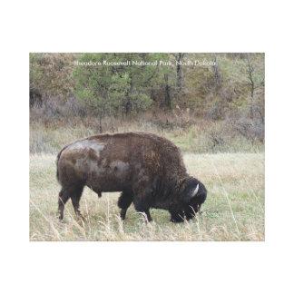 Impressão Em Tela Bisonte do parque nacional de Theodore Roosevelt,