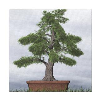 Impressão Em Tela Bonsais da árvore do zimbro do templo - 3D rendem