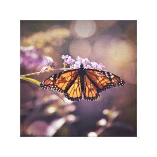 Impressão Em Tela Borboleta de monarca de incandescência Bokeh roxo