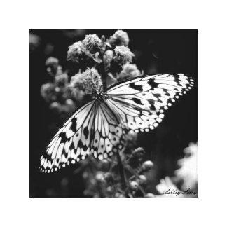 Impressão Em Tela Borboleta preto e branco