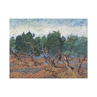 Impressão Em Tela Bosque verde-oliva de Vincent van Gogh