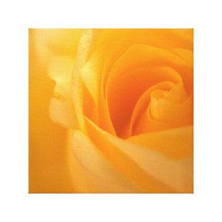 Impressão Em Tela Botão elegante do rosa amarelo