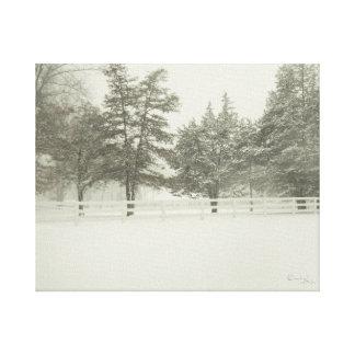 Impressão Em Tela Branco da neve