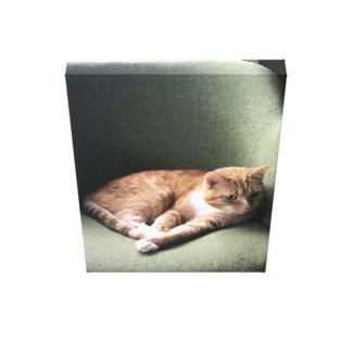 Impressão Em Tela Cadeira da manhã de Louie