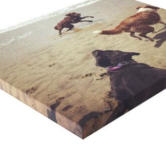 Impressão Em Tela Cães que jogam na praia