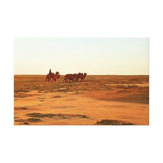 Impressão Em Tela Camelos em um pasto