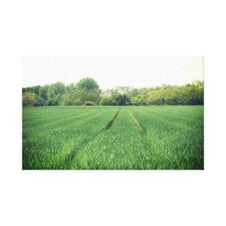 Impressão Em Tela Campos verdes