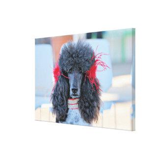 Impressão Em Tela Caniche padrão do dia 2016 da caniche - Phoebe -