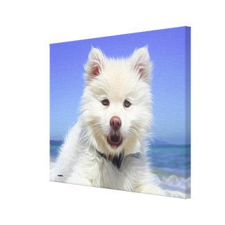 Impressão Em Tela Cão de caniche branco bonito que encontra-se na