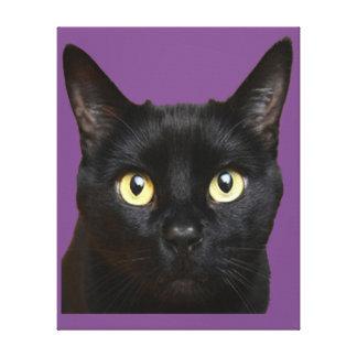 Impressão Em Tela Cara do gato