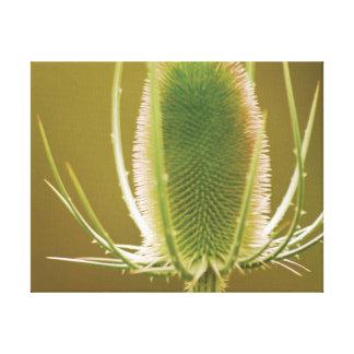 Impressão Em Tela Carda bonita da foto do fim-acima
