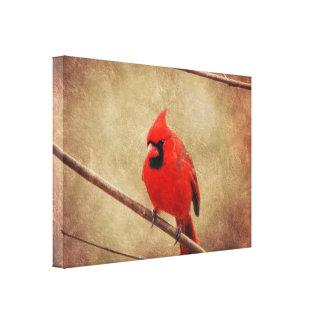 Impressão Em Tela Cardinal