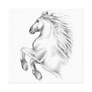 Impressão Em Tela Cavalo andaluz poderoso