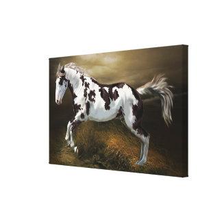 Impressão Em Tela Cavalo da pintura de Tovero do quadro do respingo
