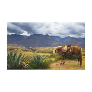 Impressão Em Tela Cavalo sagrado verdejante do vale