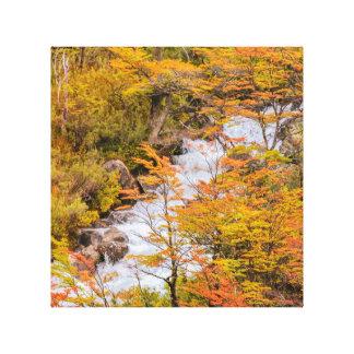 Impressão Em Tela Cena colorida da paisagem da floresta, Patagonia