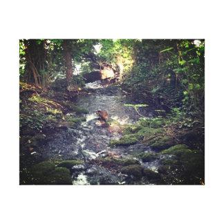 Impressão Em Tela Córrego tranquilo - vista de relaxamento