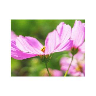 Impressão Em Tela Cosmos cor-de-rosa