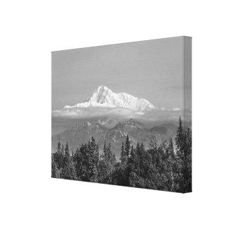 Impressão Em Tela Denali (o Monte McKinley)