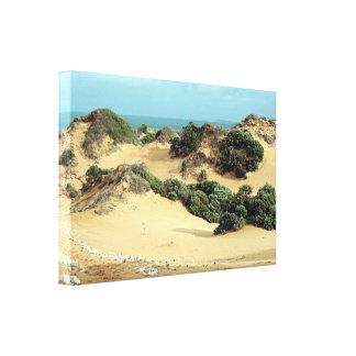 Impressão Em Tela Dunas de areia Windswept, Austrália