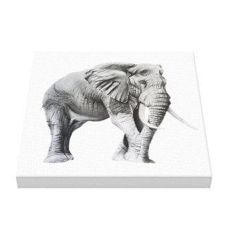 Impressão Em Tela Elefante