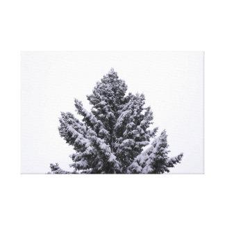 Impressão Em Tela Evergreen nevado