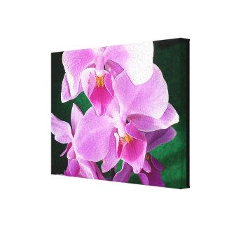 Impressão Em Tela Feche acima das flores da orquídea