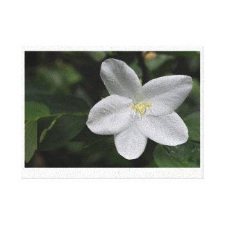 Impressão Em Tela Flor