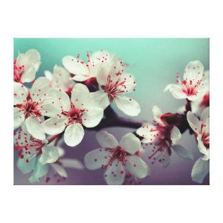 Impressão Em Tela Flor de cerejeira, Cherryblossom, Sakura