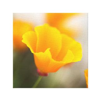 Impressão Em Tela Flor do amarelo alaranjado
