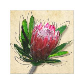 Impressão Em Tela Flor do rei Protea