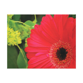 Impressão Em Tela Flor vermelha da foto bonita do fim-acima contra o